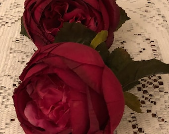 2 Wine Cabbage Roses with leaves