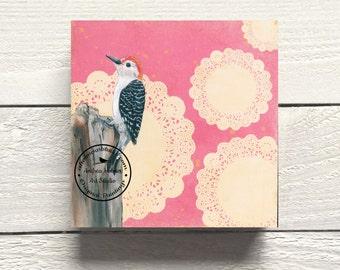Red-bellied Woodpecker Bird Print on Hardboard Canvas by Andrea Holmes