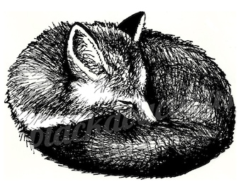 Fox Print from an Original Drawing in Black Ink on Fine Art Quality Recycled Paper