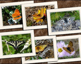 6 Butterfly Photo Greeting Cards Handmade - Blank Greeting Cards With Envelope - Butterfly Note Cards Handmade Set - 5x7 Note Card - (GP380)