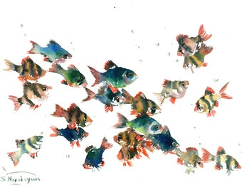 Tiger Barb, Original watercolor painting fish aquarium artwork underwater scene fish art, aquarium art Barbus fish, fish, fish lover, beach