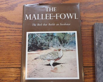 The Mallee-Fowl  The Bird that Builds an Incubator  First Edition