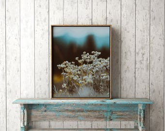 "floral print, botanical art, art, Digital Download, Printable Art, Wall Art, wildflower print, mountain decor, gifts for her ""Mountain Top"""