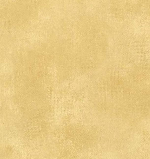 Distressed plaster worn paint gold cream tan faux for Gold wall paint uk