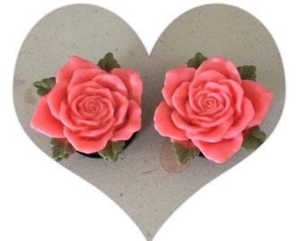 Vintage tea rose plugs