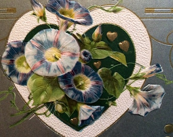 Valentine Postcard - Morning Glory Flowers - Heart - Vintage Postcard