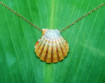 Warm yellow and orange sunrise shell necklace