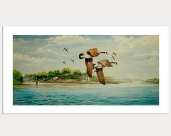 Geese in Flight Art Print 7x12