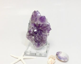 Amethyst Geode Crystal Cluster Mounted on Lucite Stand -  February Birthstone