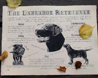 Antique styled dog standard - Labrador Retriever