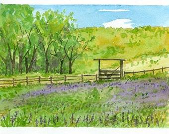 Lupine Wildflower Meadow Original Watercolor Painting