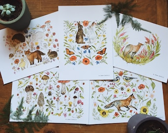 Meadow Fauna A5 Illustration Print Pack