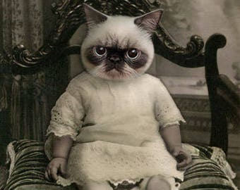 Zack, Whimsical Cat, Anthropomorphic, Creepy Cat, Photo Collage Art, Gothic Cat Art, Halloween Cat, Quirky Art, Cat Art Print, Funny Cat Art