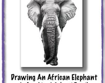 Drawing Tutorial - Step-By-Step Art Tutorial - Elephant Drawing Tutorial PDF
