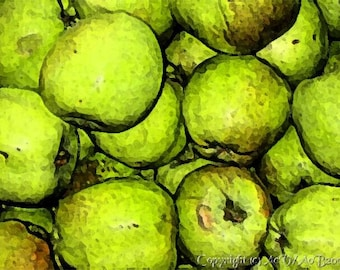 Fresco Apples, poster.  Shipping within Canada Free.