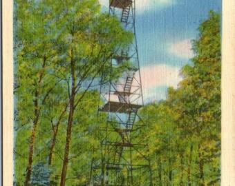 Cooksburg, Pennsylvania, Fire Tower, Cook Forest State Park - Vintage Postcard - Postcard - Unused (S)