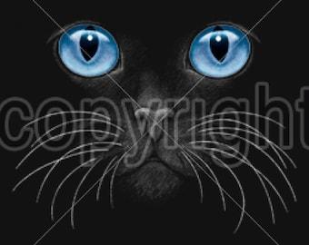 Blue Eyes Black Cat on Womans T Shirt 10669