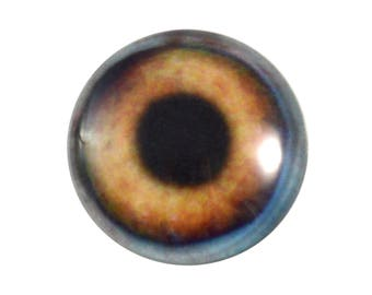25mm Glass Dog Eye for Animal Pendant Jewelry Making or Realistic Taxidermy Doll Brown Eyeball Flatback Handmade Cabochon