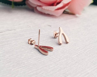 Wishbone Stud Earrings Rose Gold Small Stud Earrings Titanium Minimalist Style nickel free
