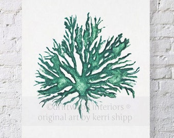 Sea Coral in Emerald II - New colour