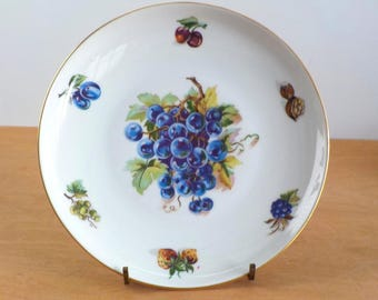 Vintage Czechoslovakian Fruit Plate • Grapes Plums Cherries Nuts Plate • Decorative Bohemian China Single Plate