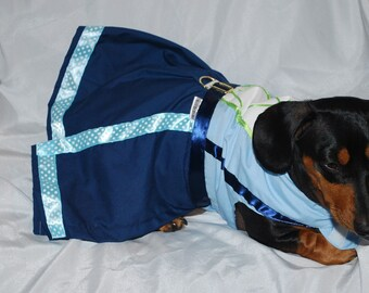 Seahawk Cheerleader Dress As seen at the Half Time Show Wiener Dog Races As seen on New Day NW
