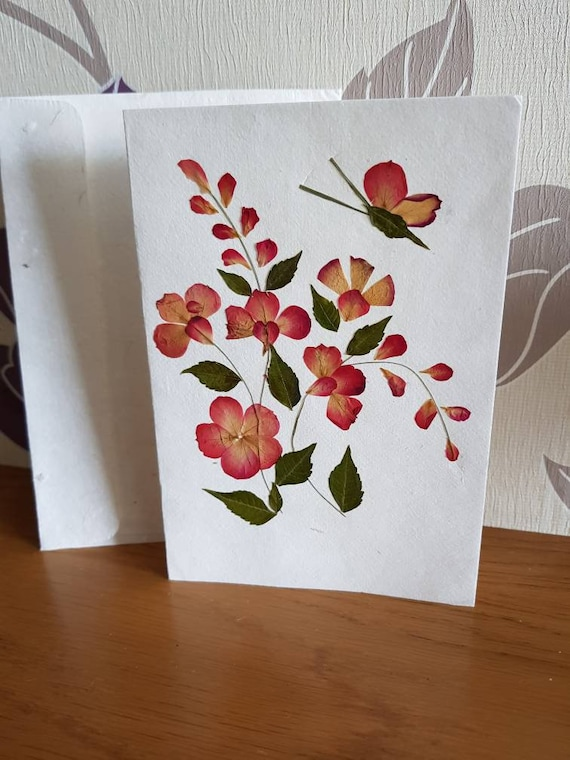 Handmade Blank pressed flower floral nature card with one butterfly on right