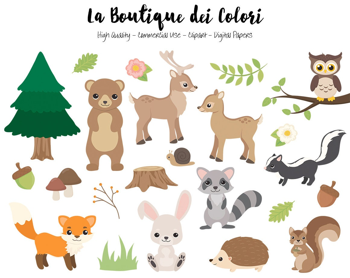 woodland animals clipart cute digital graphics png fox rh etsy com forest animals clipart jungle animals clipart free