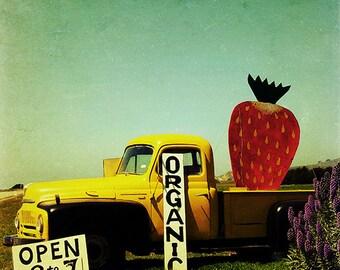 food art photography, art for kitchen, organic food art print, farm photography, vintage pickup truck - Strawberry Truck, 20x20 art print