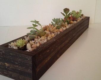 24 inch beautiful succulent planter