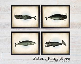 Vintage Whale Art. Whale Print Set. Rustic Whale Nursery. Nautical Decor. Nautical Wall Decor. Coastal Decor. Coastal Wall Art. Coastal Art.