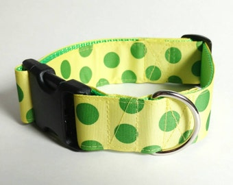 "Yellow and Green Dog Collar - Ready to Ship - Large 1.5"" Dog Collar - 1 at this price"