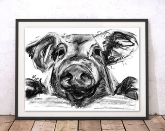 Pig Art Print Pig Wall Art Pig Charcoal Illustration Pig Kitchen Decor Gift For New Home Pig Wall Hanging Animal Print Farm Painting by Bex