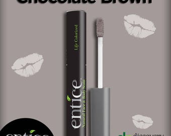 Entice Chocolate Brown Lip Stain