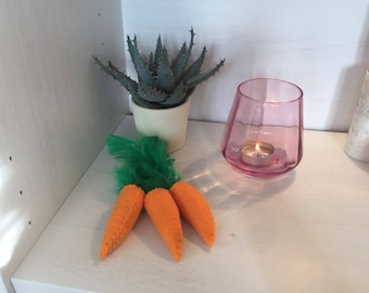 Carrot pet toy, DOG toy, Cat toy
