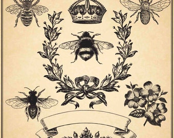 BEE VINTAGE COLLECTION - Digital Clip Art Graphics for Personal or Commercial Use