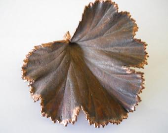 Copper Dipped Geranium Leaf Brooch