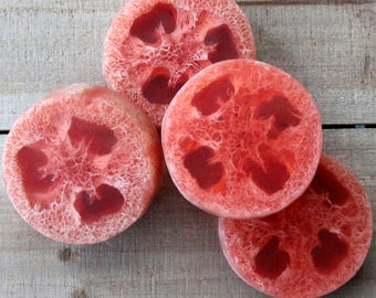 Strawberry Loofa Soap