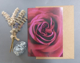 Velvet Red Rose, Photographic card, Nature greeting card, botanical, Notecard for her, floral