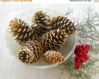 ON SALE Assorted Gold Pine Cones  Set of 6, Wedding Decor Inspired, Christmas Decor, Ornaments, Props, Farmhouse Decor,  Craft Supplies Proj