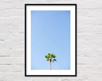 Palm Tree Print, Palm Print, Tropical Wall Art, Palm Tree Photography, Coastal Art, Beach House Decor, Printable Poster, Digital Download