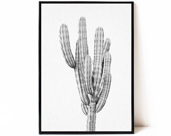 Cactus print black and white, printable cactus poster, instant download cactus wall art, black and white cactus photography, large wall art