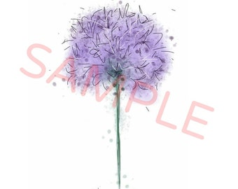 Allium painting // allium print // digital art print // allium drawing // allium illustration // purple flower painting // flower gifts
