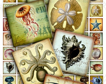Digital collage sheet SEA LIFE 1x1 inch square octopus jellyfish fish - magnet stickers pendant craft - instant download printable - qu269