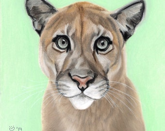 Cougar/Mountain Lion Art Print, Wildlife Decor, - Fine Art Giclee Print of an Original Pawstel