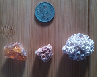 Japanese blue sea glass,stone,fossil barnacle, 3 pieces