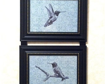 Hummingbird Picture Collage Frame Wall Hanging Art Decor