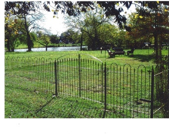 Wrought Iron 4' Tall x  8' Wide Center Divide Gate - Entry Way Gates for Your Home