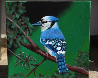 Blue jay bird original acrylic painting