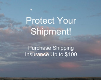 Up to 100 Dollars Shipping Insurance, Domestic or International, Protect your Order with Shipping Insurance